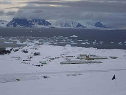 250px-Rothera_from_reptile